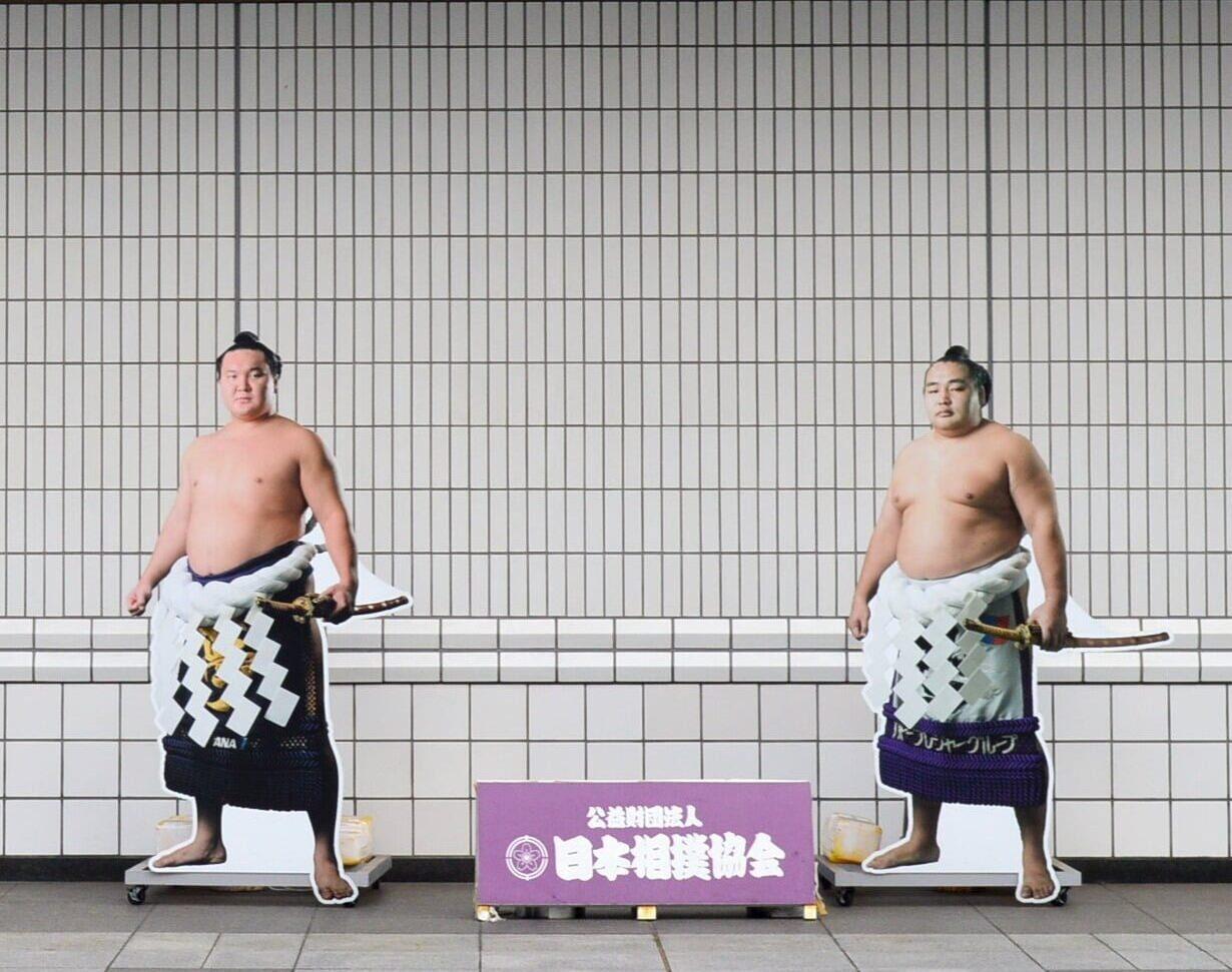 luchadores sumo