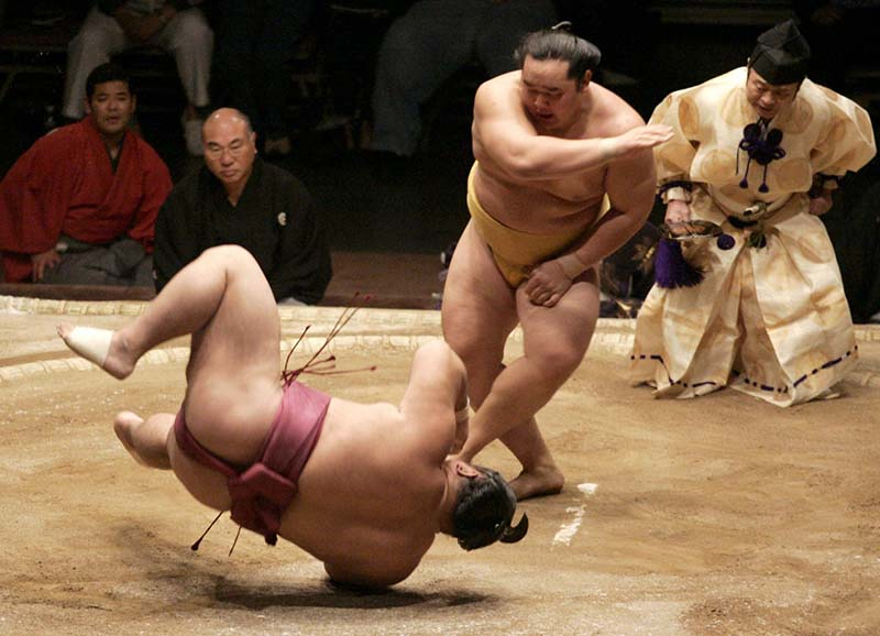 sumo lucha