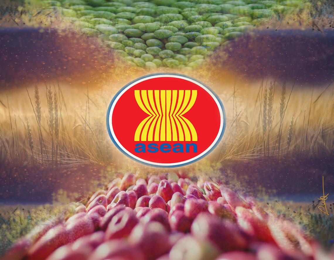 ASEAN Mercosur